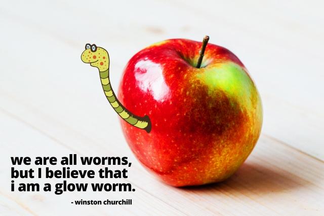 wormzy